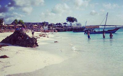 Zanzibar : que faire ?